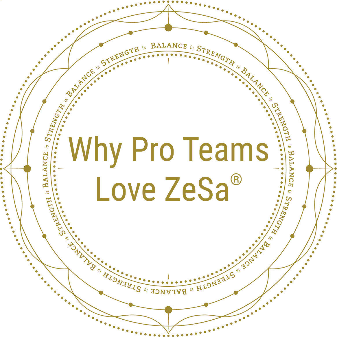 Why Pro Teams Love ZeSa®