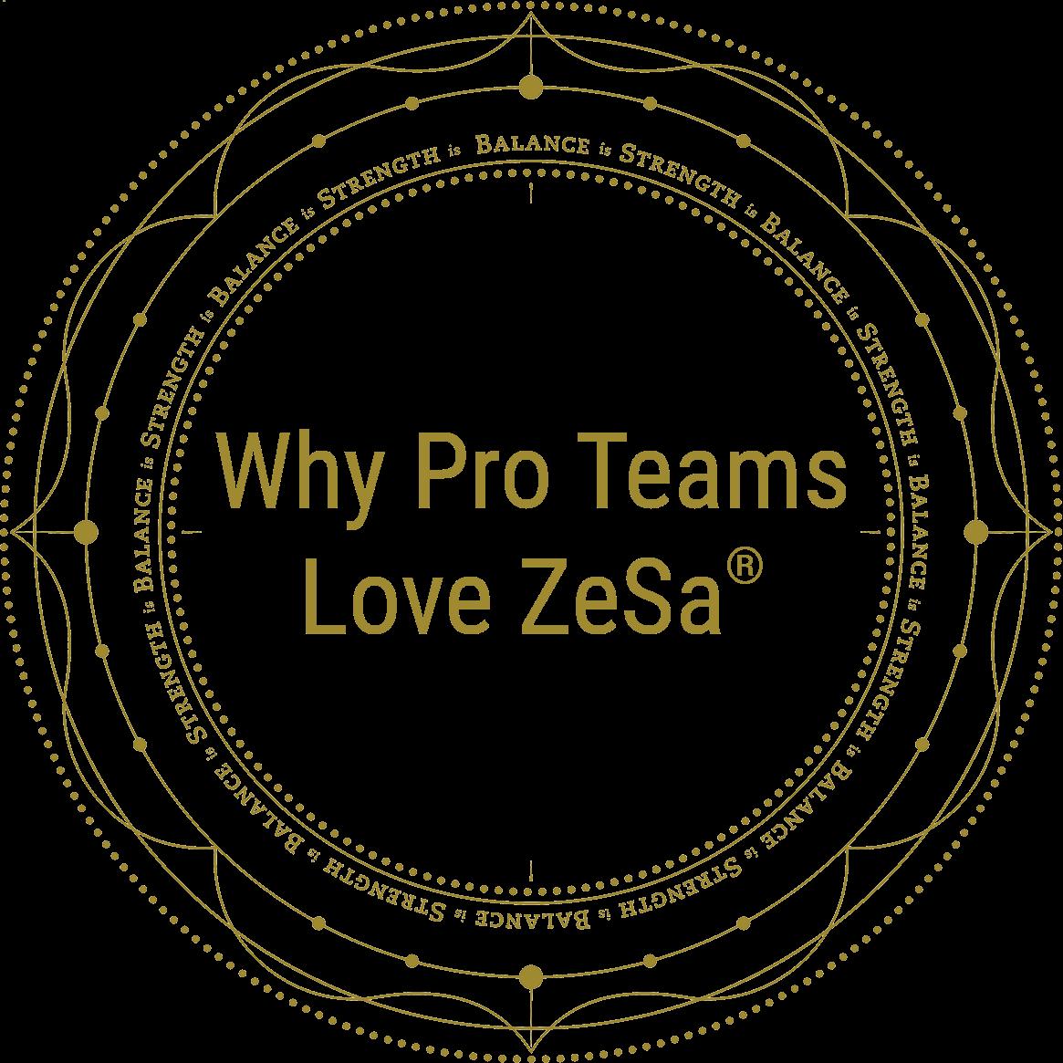 Why Pro Teams Love ZeSa®