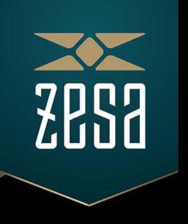 ZeSa Fitness